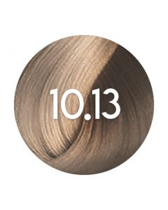 L'Oreal Inoa Non-Fundamental 10.13